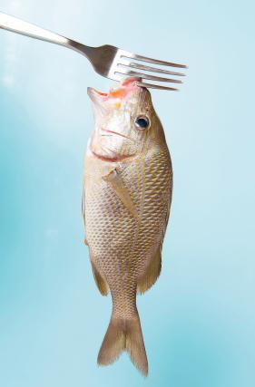 pescados restaurante carrayuncal