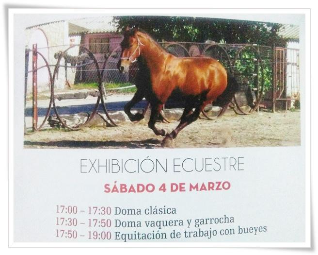 feria del caballo fuentepelayo carrayuncal
